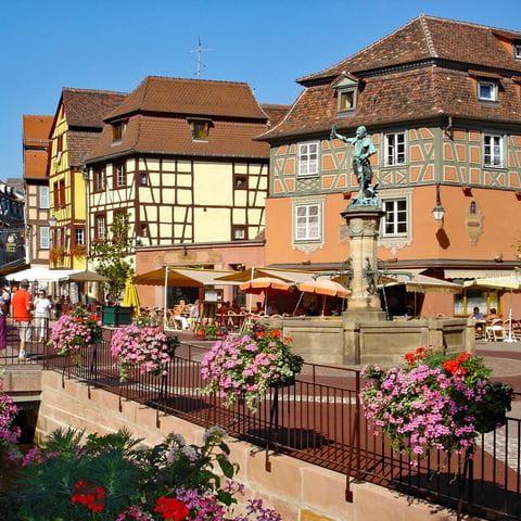 Korsvirkeshus och blommor i Colmar