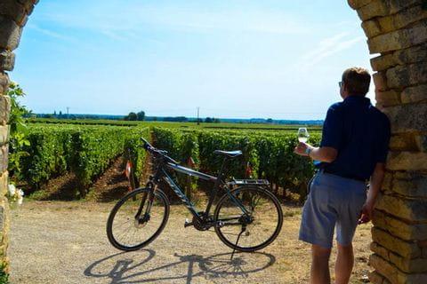 Cykelpaus med vin