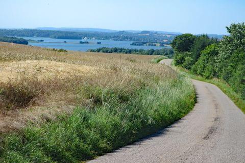 Landscape in East Jutland
