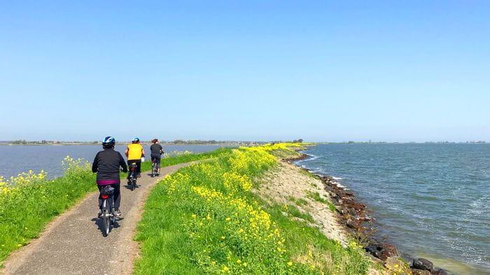 Cykelresor i Holland